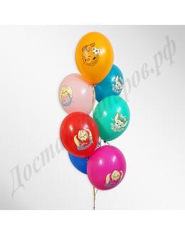 Шарики под потолок Барбоскины День Рождения